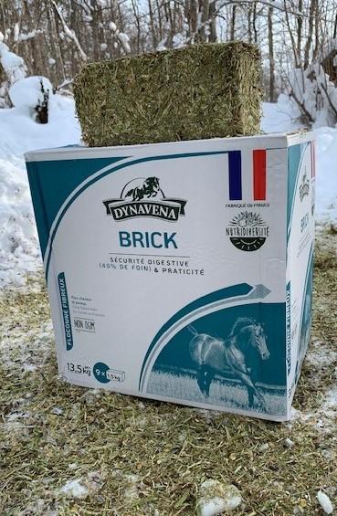 Brick i naturen